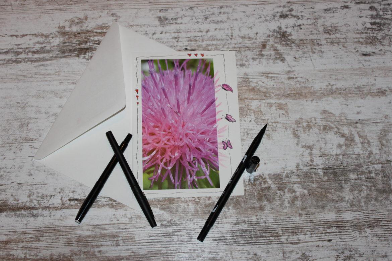 Blume pink